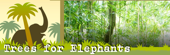 Trees for Elephants